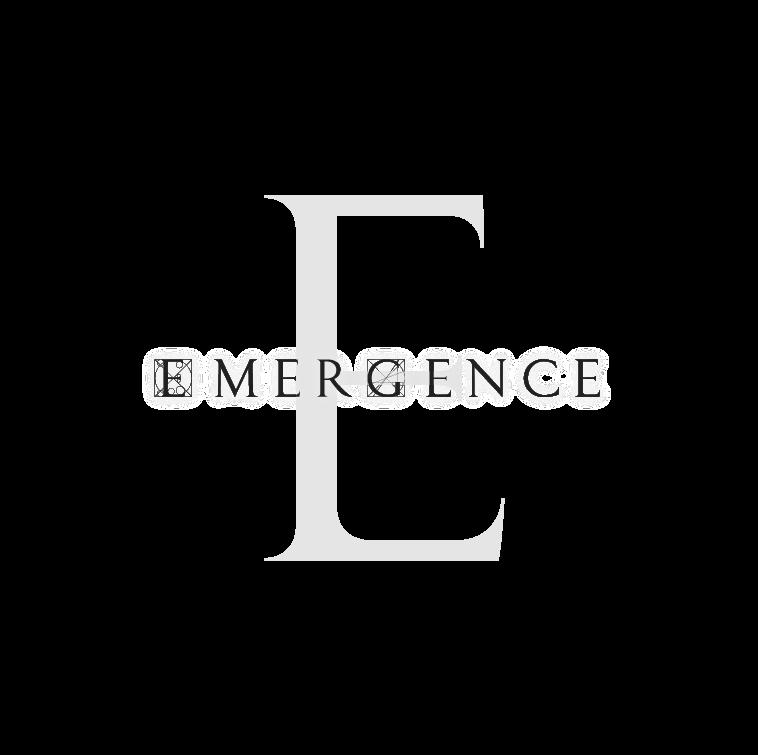 "Artists for Change Joins ""Emergence"" Program"